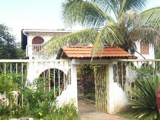 Casa Talamanca, hoteles en Playas del Coco
