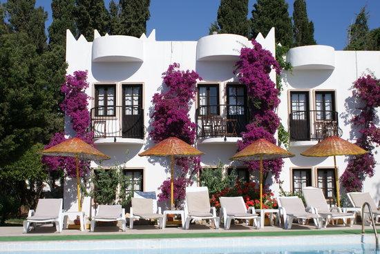 Safir Hotel: Our lovely little hotel