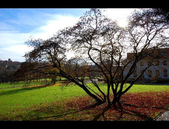 Baden-Baden, Germany: il parco vicino al Teatro