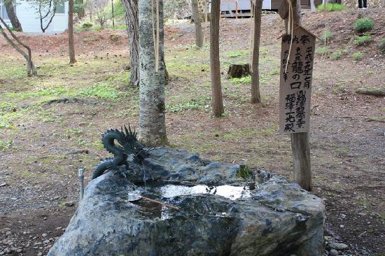 Yoshitsune Shrine: 龍?