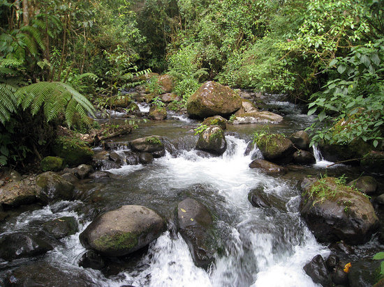 Osa Peninsula, Costa Rica : The Coto River and surroundings