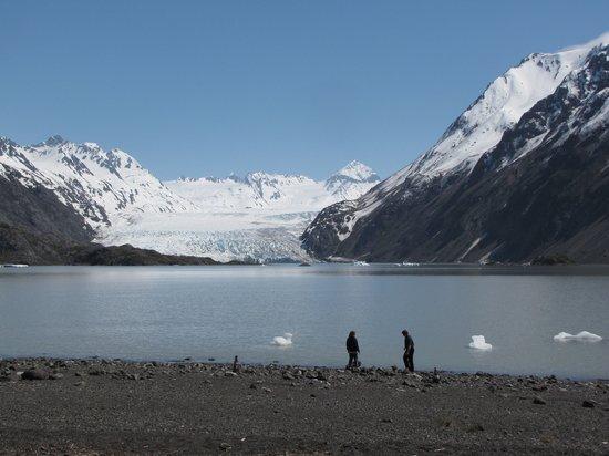 Halibut Cove, AK: Our famous glacier trip!