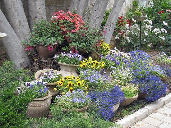 Little Jerusalem - The Ticho House: Small arrangement in Ticho House garden