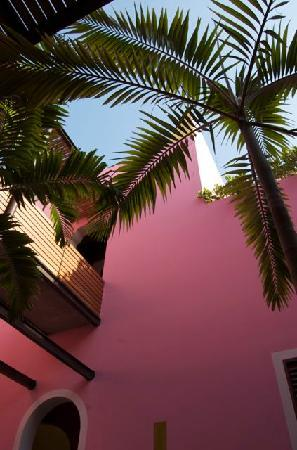 Rosas & Xocolate Boutique Hotel & Spa: beautiful colours