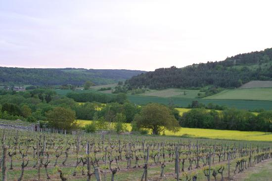 Domaine de Pellerey : What can you say