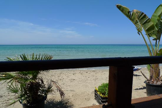 Delfino Beach Hotel: view from beach cafe