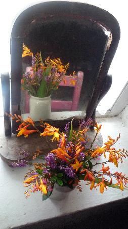 Wild Flowers at the Glencolmcille Folk Village