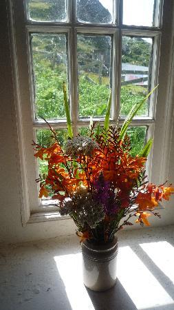 Wild Flowers at the Glencolmcille Folk Village