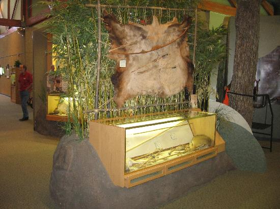 Cape Girardeau Conservation Nature Center : Native American display.