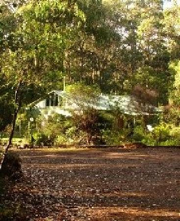 ‪هارموني فوريست أكوموديشن آند فاينيارد: your secluded cottage in the forest‬