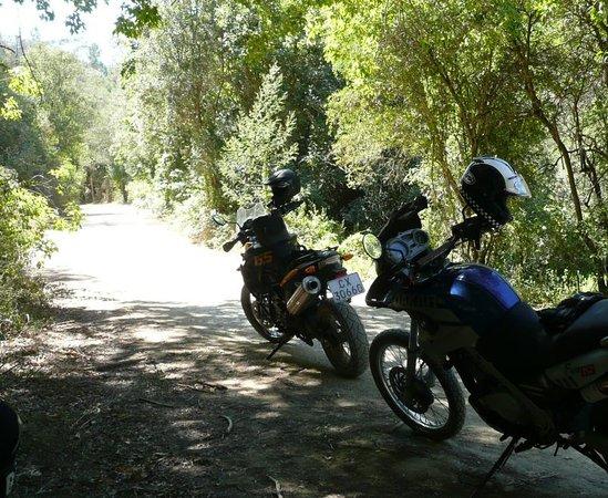 Bundu Motorcycle Adventures Day Tours