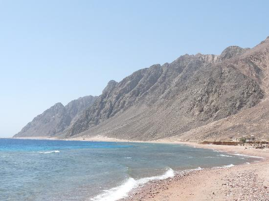 One of the 100 amazing reefs at Dahab