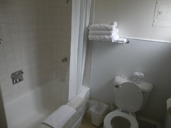 East Glacier Park, มอนแทนา: The bathroom - very clean with fresh clean towels