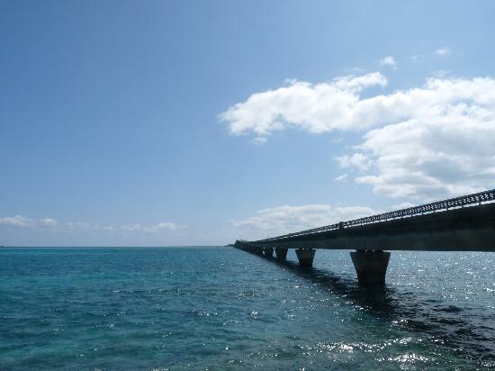 shimoji island - Picture of Shimoji-jima Island, Miyakojima - TripAdvisor
