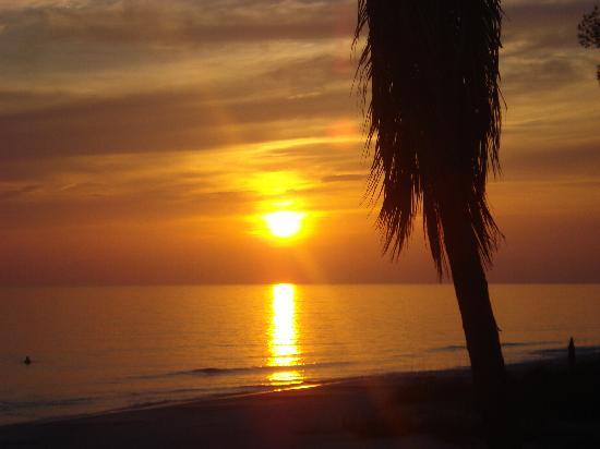The Nautilus Condominiums : gorgous sunsets every nite