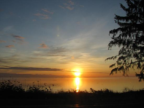 Campbell River, Καναδάς: With over 24 km of ocean front in our city, there never lacks for photo ops like these.