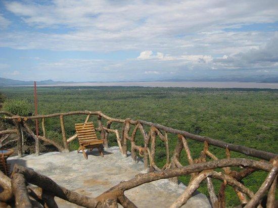 Arba Minch, Αιθιοπία: 田舎風レストランの端っこからの森の眺め。