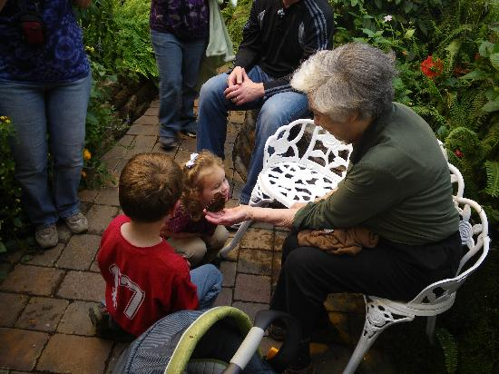Wings of Wonder: a butterfly landed on greatgrandma