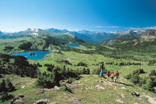 Banff Lake Louise Tourism Office