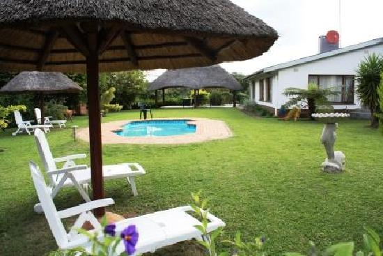 Garden and Swimming pool,umbrellas,loungers. - Picture of ...