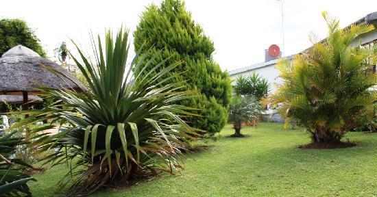 Bushbuck Lodge: Gardens