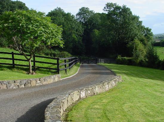Fairymount Farm Ranch Reviews Roscrea Ireland
