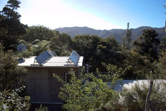 Te Ngahere Iti Foreststay: Eco friendly living