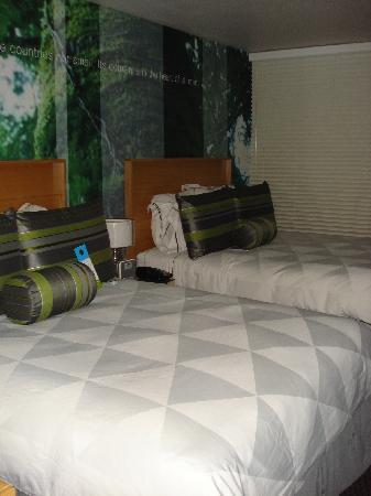 多馬恩酒店照片