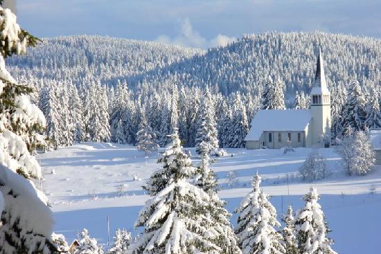 Pension Haus Sonneck: Beautiful winter photos