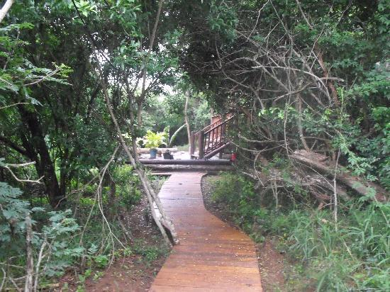 Umkhumbi Lodge: Pathway to lapa