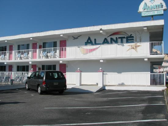 Alante Oceanfront Motel: very well maintained