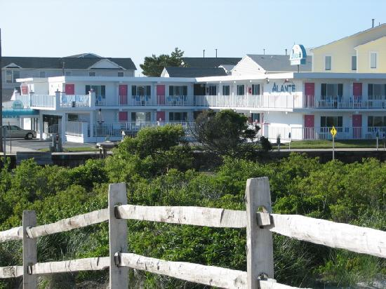Alante Oceanfront Motel: view of the motel from just across the street at the beach