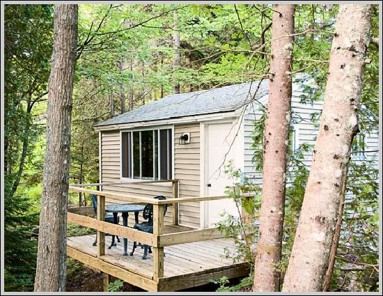 Acadia Cottages: All cottages are nestled in the woods