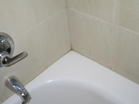 Paramount Hotel: shower grout needs cleaning