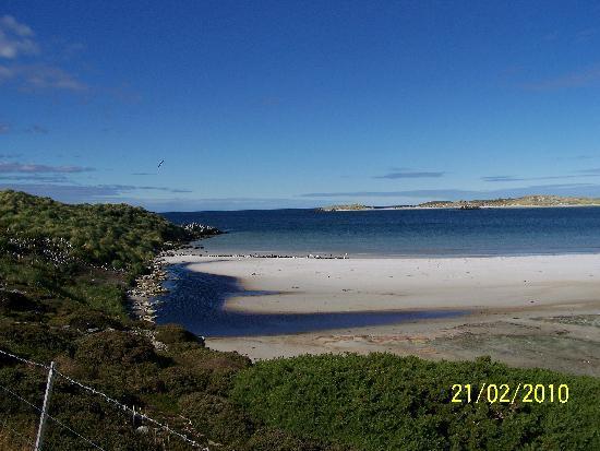福克蘭群島照片