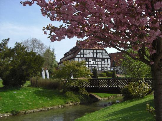 Bad Sassendorf, Alemanha: Schnitterhof und seine schöne Lage