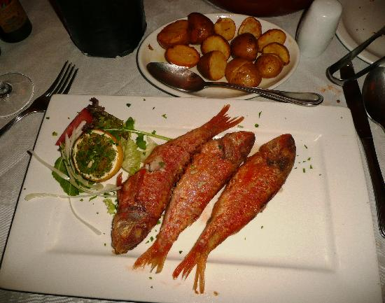 Trattoria Palazz: Grilled Fish of the Day (Red Mullet) Fantastic, Simple and Fresh