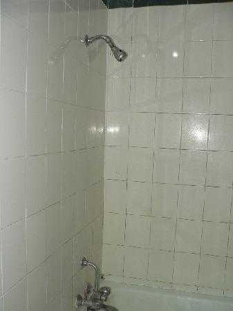 Hotel Pushp Villa: Shower was ok