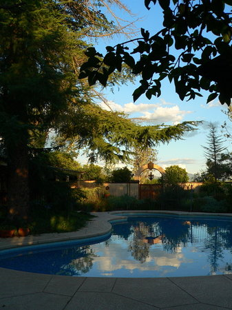 Hacienda Corona de Guevavi: Relax by the pool....