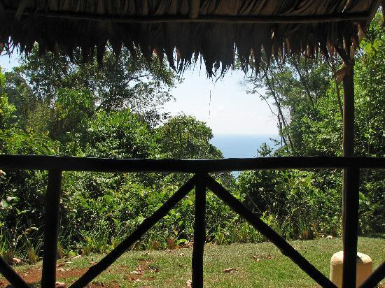 El Remanso Lodge: View from lower level of cabin to the ocean