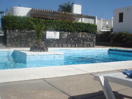 Bungamerica : Pool