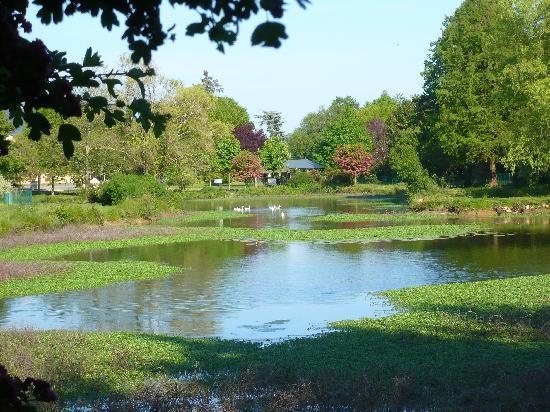 Josselin, Франция: Le parc