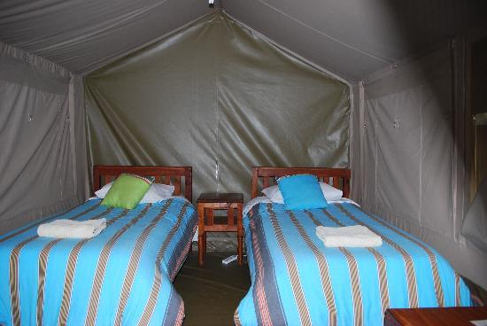 Wildebeest Eco Camp: Standard Twin