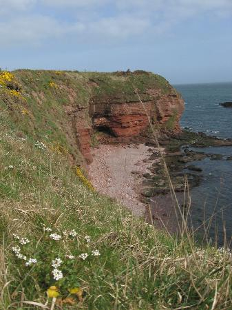 Harbour Nights Guest House : Along the way to Auchmithie