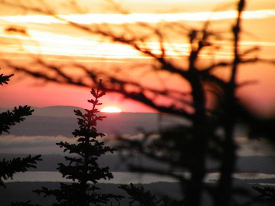 Bar Harbor Cottages and Suites: Great sunset watch, Bar Harbor