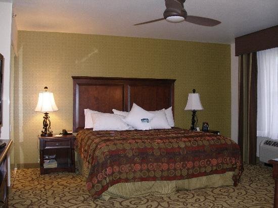 Homewood Suites by Hilton Las Vegas Airport: Handicap room no. 441