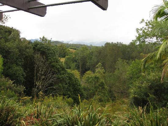 Lily Pily Country House : The view from our room (even in the rain it was beautiful)