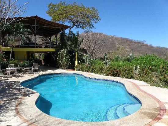 Rancho Armadillo Estate: Hotel pool