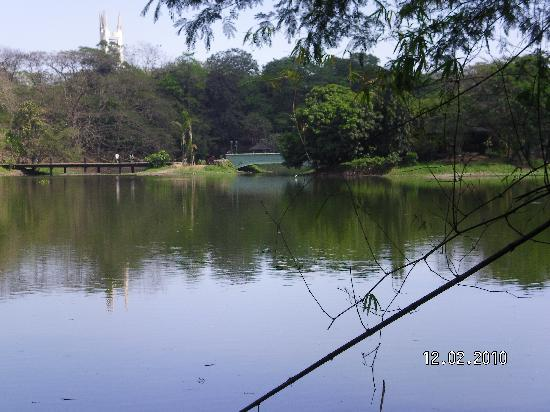 Quezon City, Philippines : Walking round the lake