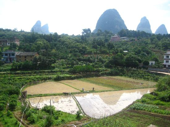 Trippers Carpe Diem Hostel Yangshuo : view from the terrace
